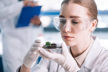 selective focus of attractive biochemist in goggles looking at green plant