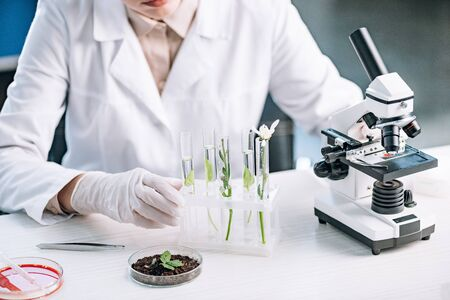 cropped view of biochemist near green plants and flower in test tubes