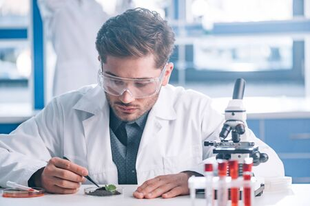 selective focus of biochemist in goggles holding tweezers near green plant and test tubes
