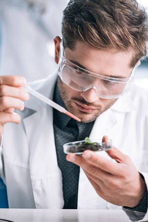 selective focus of handsome bearded biochemist holding pipette near glass with plant and ground Stock Photo
