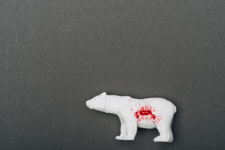 Top view of white toy bear with blood on grey background, killing animals concept