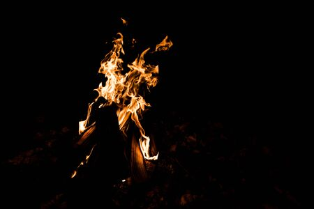 close up of flame in camp fire in darkness in the night  Banco de Imagens