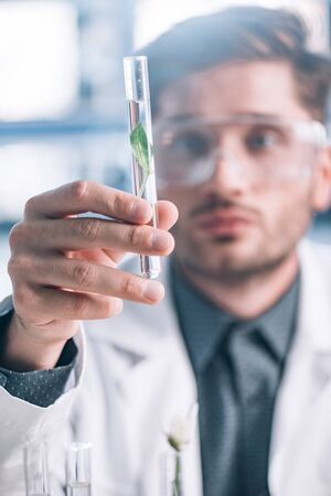 selective focus of handsome biochemist in goggles holding glass test tube with green plant