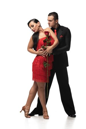 sensual, elegant dancers performing tango while holding red rose on white background