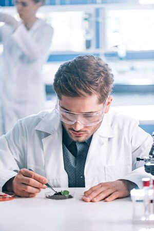 selective focus of handsome biochemist in goggles holding tweezers near green plant