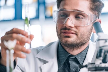 selective focus of handsome biochemist looking a test tube with green plant
