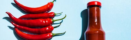 Top view of ripe chili peppers and chili sauce in bottle on blue background, panoramic shot Standard-Bild