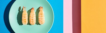 top view of fresh nigiri with shrimps on blue, pink, orange background, panoramic shot