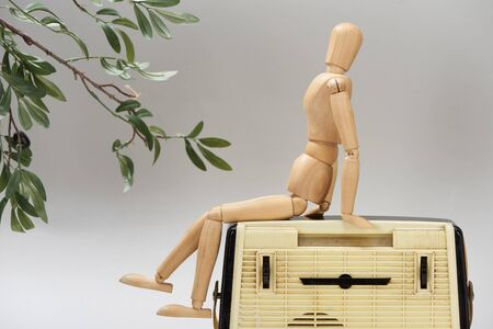 Wooden doll on vintage radio beside plant isolated on grey