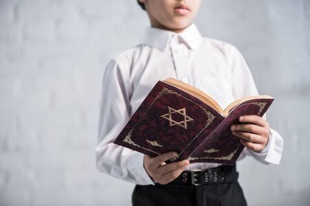 cropped view of jewish boy in shirt reading tanakh 版權商用圖片