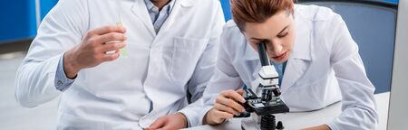 panoramic shot of molecular nutritionist using microscope and colleague holding test tube