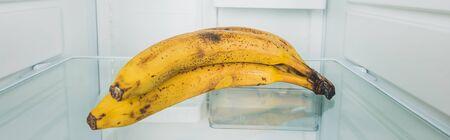 Panoramic shot of ripe bananas on fridge shelf