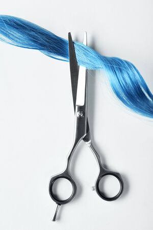 Top view of scissors and curl of blue hair on white background