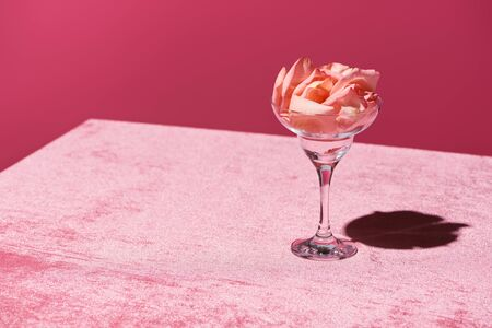 rose petals in glass on velour pink cloth isolated on pink, girlish concept