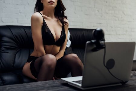 Cropped View Of Sexy Webcam Model In Underwear Posing At Laptop ...