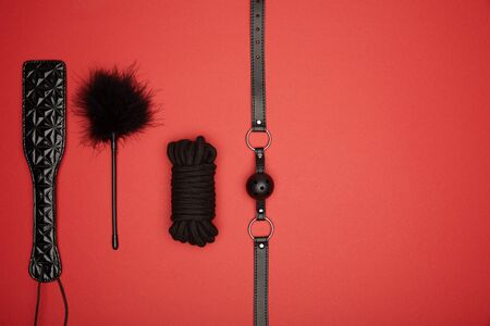 top view of black paddle, gag, rope, feather tickler isolated on red