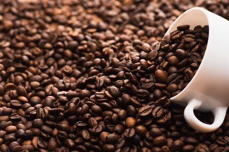 selective focus of fresh roasted coffee beans and white cup 스톡 콘텐츠