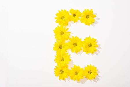 top view of yellow daisies arranged in letter E on white background