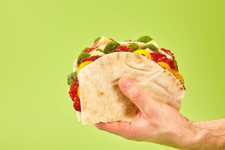 partial view of man holding fresh sandwich with salami, pita, vegetables and cheese isolated on green
