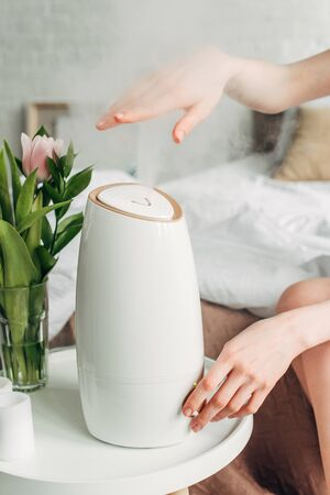 cropped view of female hands with tulips and air purifier spreading steam