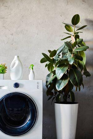 detergent and spray bottles on white washing machine near plant in modern bathroom