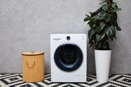 modern washing machine near green plant, laundry basket and ornamental carpet in bathroom