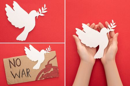 collage of female hands, white paper dove and cardboard placard with no war lettering and bomb on red background