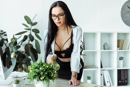 Selective focus of sensual secretary in bra spraying plant on working table Standard-Bild