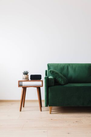 green sofa with pillow and wooden coffee table with plant and alarm clock Stockfoto