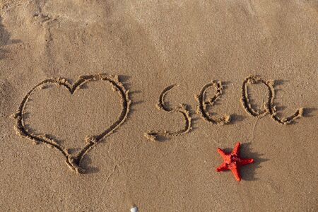 Top view of heart sign with lettering sea and red starfish on sand
