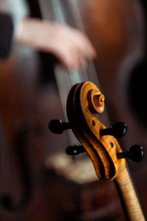 cropped view of professional musicians playing on violin and contrabass on dark stage, selective focus