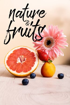 pink gerbera, berries, grapefruit and apricot near nature and fruits lettering on beige