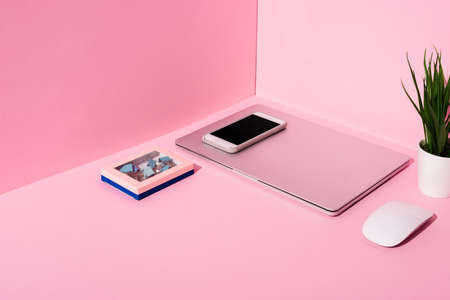 modern gadgets, binder clips and plant on pink background Фото со стока