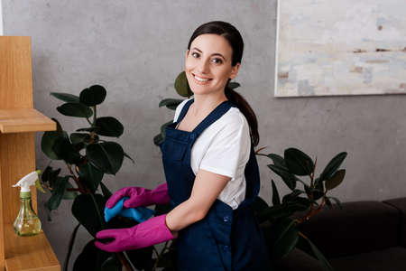 Smiling cleaner in workwear cleaning leaves of plant at home