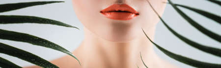 panoramic crop of woman with orange lipstick near palm leaves on white