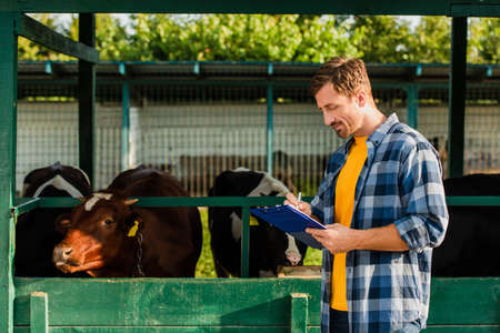 farmer in checkered shirt standing near cowshed and writing on clipboard