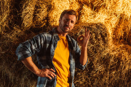 farmer in plaid shirt standing with hand on hip and showing ok gesture near hay stack Foto de archivo