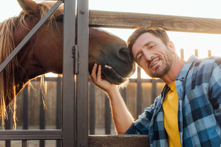 rancher in plaid shirt touching horse while looking at camera near corral fence Foto de archivo