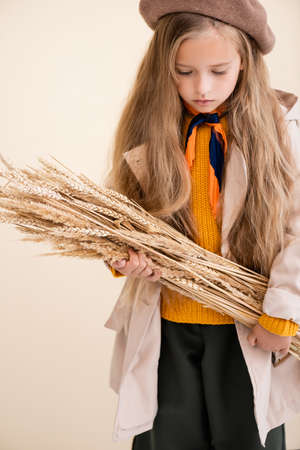 fashionable blonde girl in autumn outfit with wheat spikes isolated on beige
