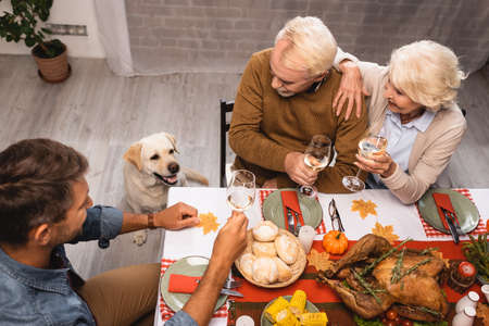 high angle view of golden retriever near family holding glasses of white wine during thanksgiving dinner
