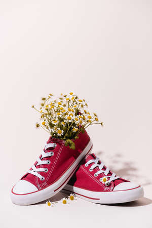 casual red sneakers with chamomile on white background