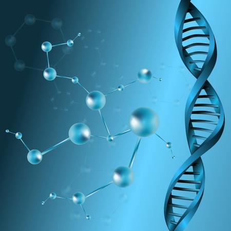 adn humano: Molécula de ADN estructura de fondo ilustración vectorial eps10 Vectores