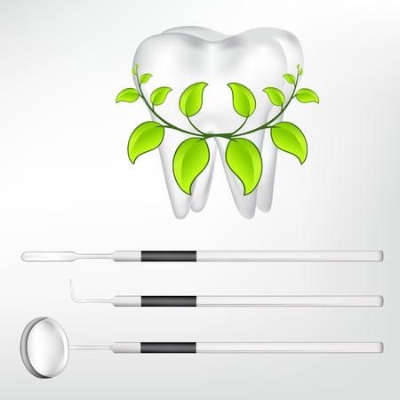 lustre: tooth and dental tools  eps10 vector illustration Illustration