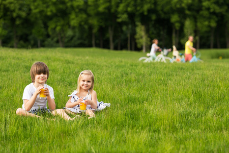 Brother and sister on picnic