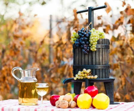 juice squeezer: Autumn harvest concept, grape, autumn fruits and wine with juice squeezer on rustic table.