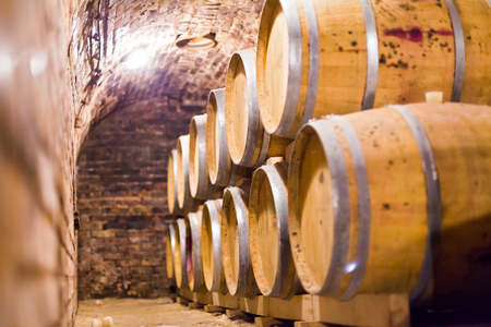 vinery: Wooden barrels conaining wine stacked up in cellar.
