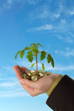 foresee: Small plant sprouting from a pile of golden coins held in a hand, against blue skies - concept for business, innovation, growth, new ideas and money