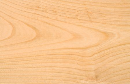 nervation: Unpolished beech wood texture without knots