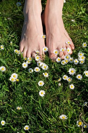 Woman feet on grass with flowers - relaxation