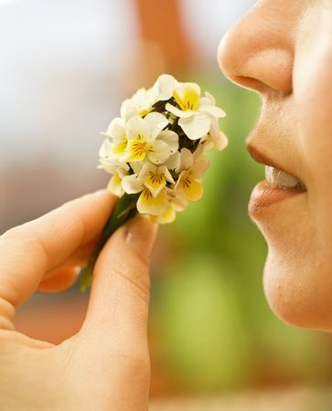 Woman smelling a small wildflowers bouquet - closeup